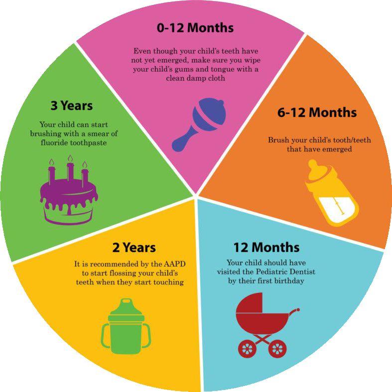 childs oral care timeline